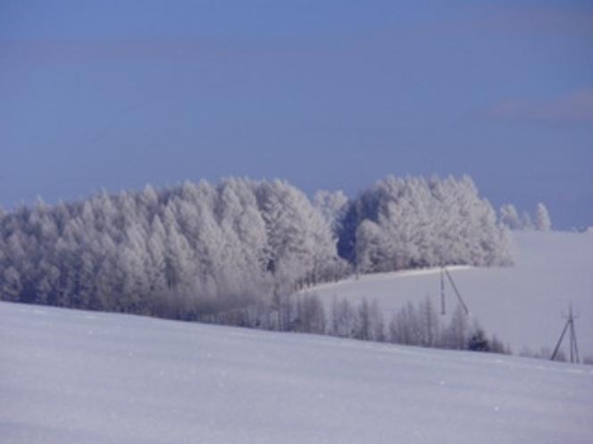 冬の景色(-25度)