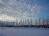 冬景色(ほんとに近くの駐車場)