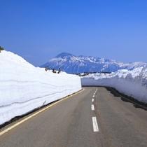 アスピーテライン 雪の回廊