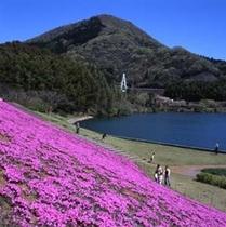 松川湖 湖畔