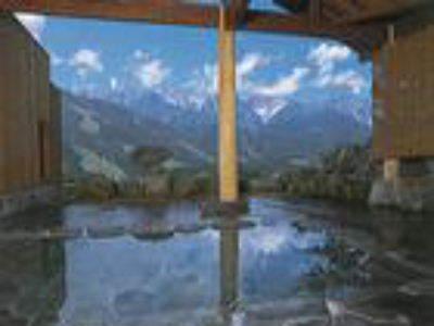 白馬八方温泉「みみずくの湯」