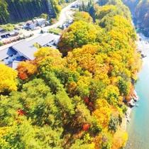 奥会津の豊かな森に面したロケーション