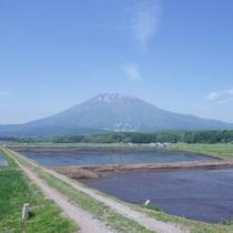 *【周辺】黒姫高原/澄み切った空気の中、のんびりお過ごし下さい。