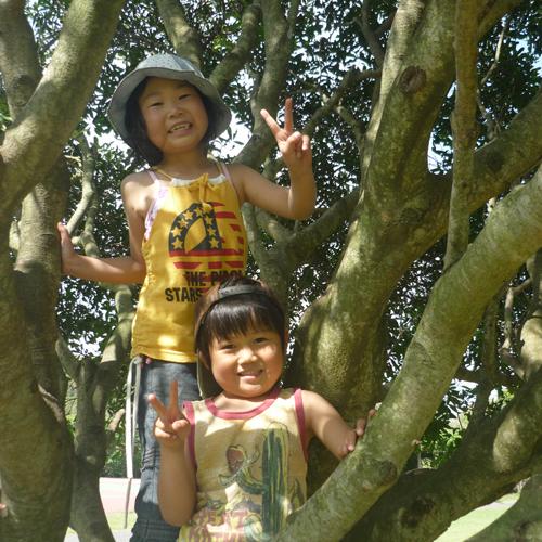 園地で遊ぶ子供たち
