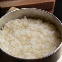 日本穀物検定「特A級」の京都丹後産コシヒカリ米
