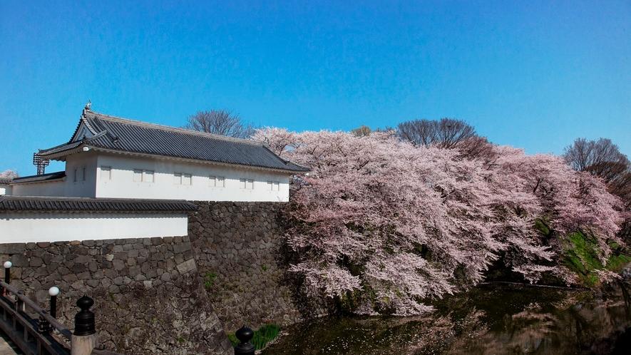 [山形城址 霞城公園]戦国武将最上義光の居城跡の公園。お堀に囲まれた広大な公園は山形随一の桜の名所。