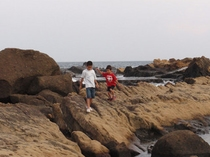 海で磯遊び