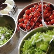 ■朝食ビュッフェ 新鮮野菜のサラダ