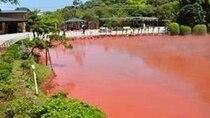 別府地獄めぐり【血の池地獄】