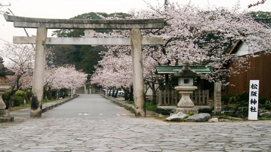 松阪の3大神社の一つ「松阪神社」