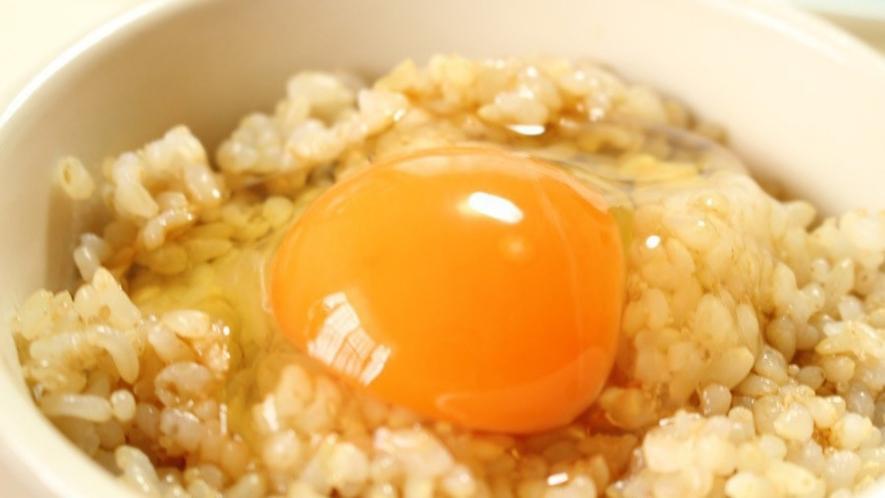 地産地消 地元産新鮮卵を使用