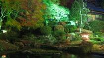 ■秋夜の依水園