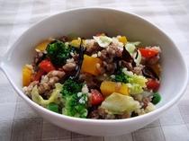 ワンちゃん用ご飯(牛肉と夏野菜のパエリア)