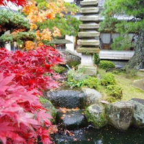 【秋:中庭の紅葉と池】
