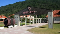 【島根ワイナリー】  ワインの醸造見学、試飲などが楽しめます。ぶどうジュースも!