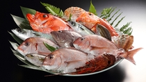 地元食材を使った郷土食溢れるお料理に、お造りなど皆様のお口に合いますよう、季節替わりにてご用意。