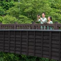 ◆橋の上で◆