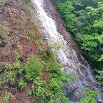 【しゃくなげの滝】岩肌を滑るように落ちる美しい滝。新緑や紅葉だけでなく花の季節にはツツジが美しく咲き