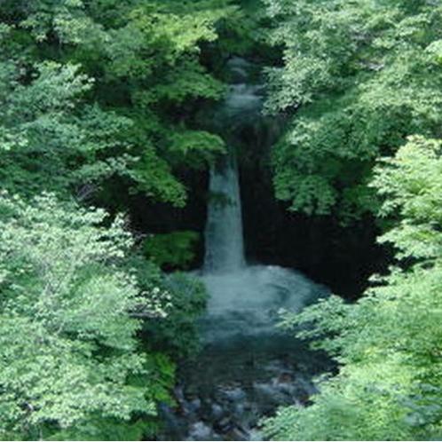 【小泉の滝】落差は6m程ですが、水量の多い迫力のある滝です。