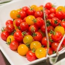 サラダコーナーの新鮮野菜