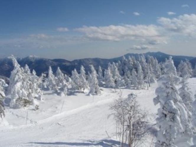 たかつえスキー場の山頂