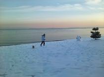 冬のマキノサニービーチ2