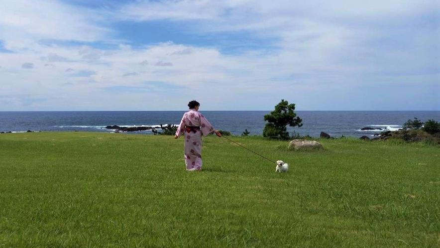 【ワンちゃん専用プラン】広い庭園でお散歩