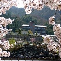 桜4月☆施設外観