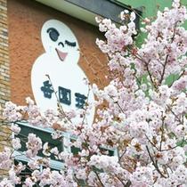 *外観/桜をはじめ、様々な草花に囲まれる春。
