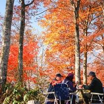 *ねずこの森トレッキング/秋の爽やかな風と絶景の中至福のランチを堪能♪