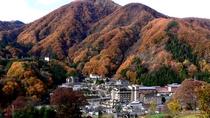 秋の温泉郷全景