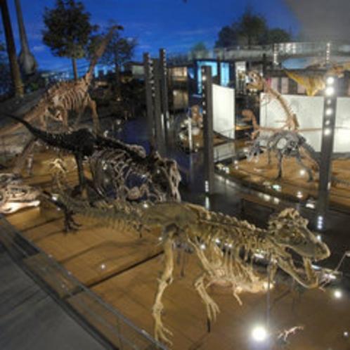 ※福井県恐竜博物館提供(1F「恐竜の世界」)