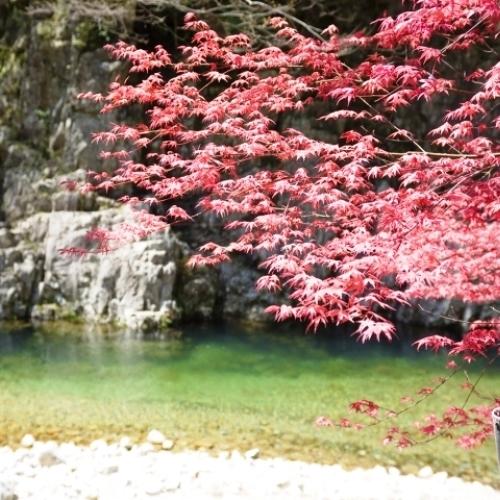 三段峡は紅葉のシーズンも見所いっぱいです!