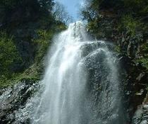 本谷幻の滝 300x250