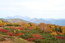 Autumn color Mt. Norikura Hotokureijin