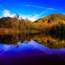 紅葉 秋のまいめの池 kou0_photograph