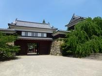 上田城・夏