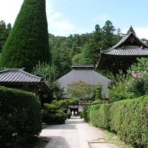 ◆安楽寺◆夏
