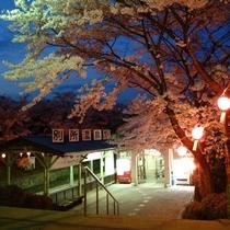 ◆別所温泉駅◆夜桜とある風景