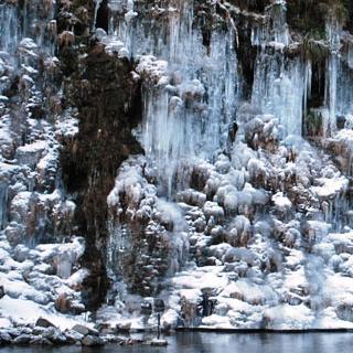 「つらら」…花ではありませんが、大滝地区の「三十槌のつらら」は自然が生み出した神秘的な空間です。