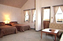 客室例:DX TWIN ROOM