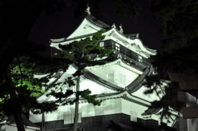 岡崎城 夜(岡崎公園)
