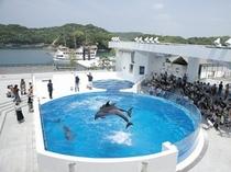 水族館「海きらら」