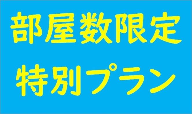 ●特別プラン● ≪販売日限定・部屋数限定・素泊まり≫(連泊時掃除なし)