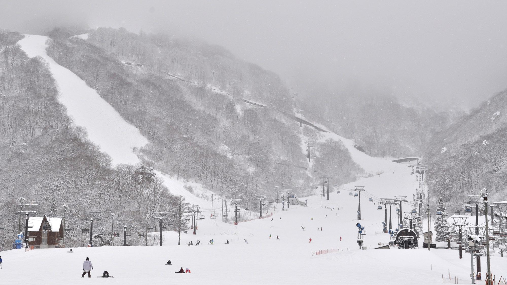 【スキー場 エイブル白馬五竜】当ペンション前から無料シャトルバスに乗れます