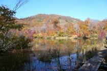 鎌池の紅葉