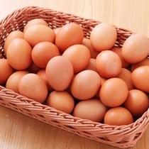 朝ごはんバイキング 生卵