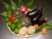 自家製野菜