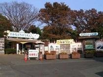 ★かみね動物園