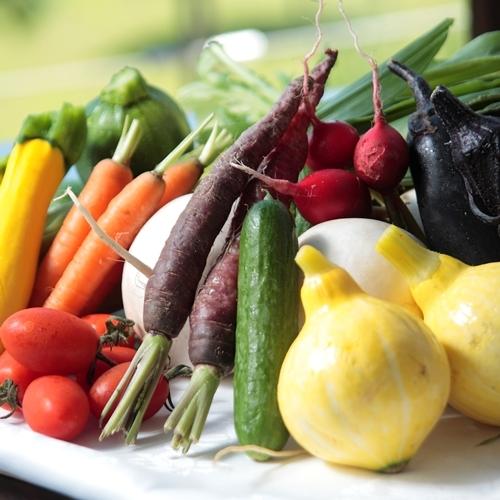 【自家農園のとれたて野菜】